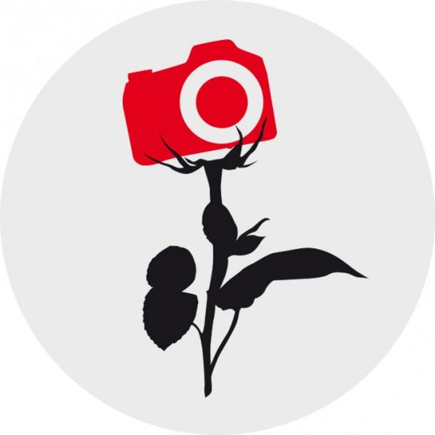 Rose Foto Kamera